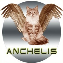 Слушать радио ANCHELIS онлайн