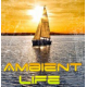 Слушать радио Ambient Life Radio онлайн